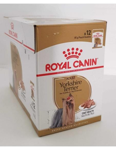 Royal Canin BHN Yorkshire Terrier Adult Alimento Húmido Cão