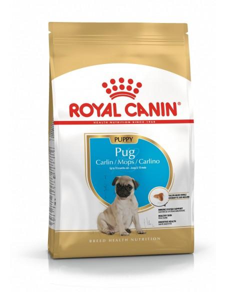 Royal Canin Cão Pug Puppy