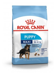 Royal Canin Cão Maxi Puppy