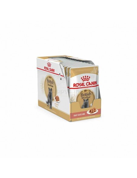 Royal Canin Gato British Shorthair Saquetas 12X85 Gr