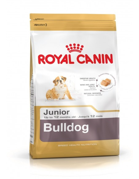 Royal Canin Breed Health Nutrition Bulldog Júnior Alimento Seco Cão