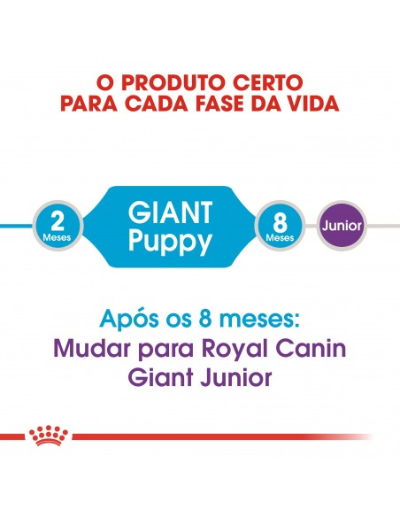 Royal Canin Size Health Nutrition Giant Puppy Alimento Seco Cão