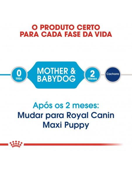 Royal Canin Size Health Nutrition Maxi Starter Alimento Seco Cão