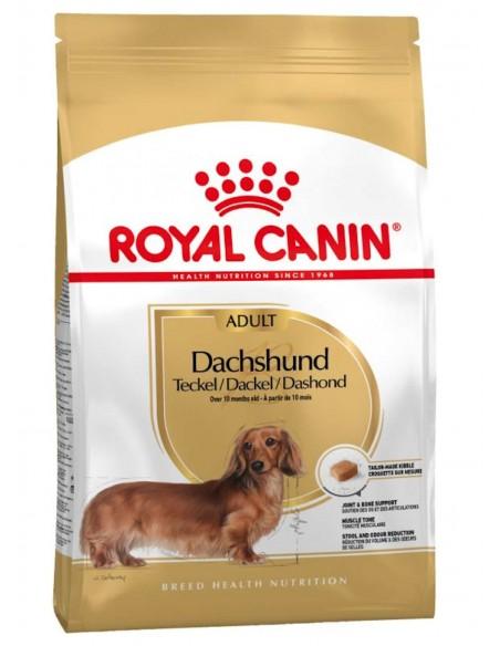 Royal Canin Breed Health Nutrition Dachshund Adult Alimento Seco Cão