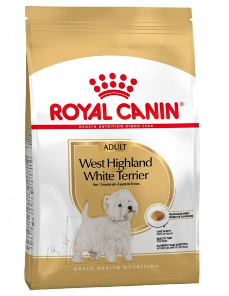 Royal Canin Breed Health Nutrition West Highland White Terrier Adult Alimento Seco Cão