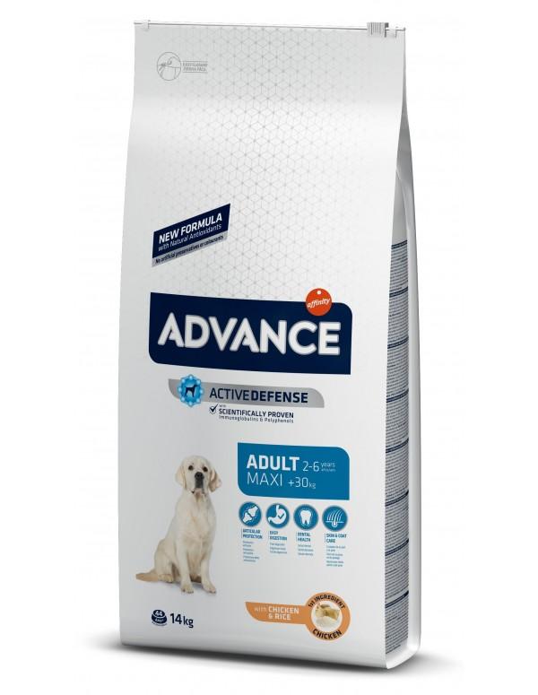 Advance Maxi Adulto Alimento Seco Cão