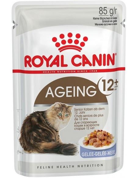 Royal Canin Ageing 12+ Alimento Húmido Gato Saquetas (Molho)