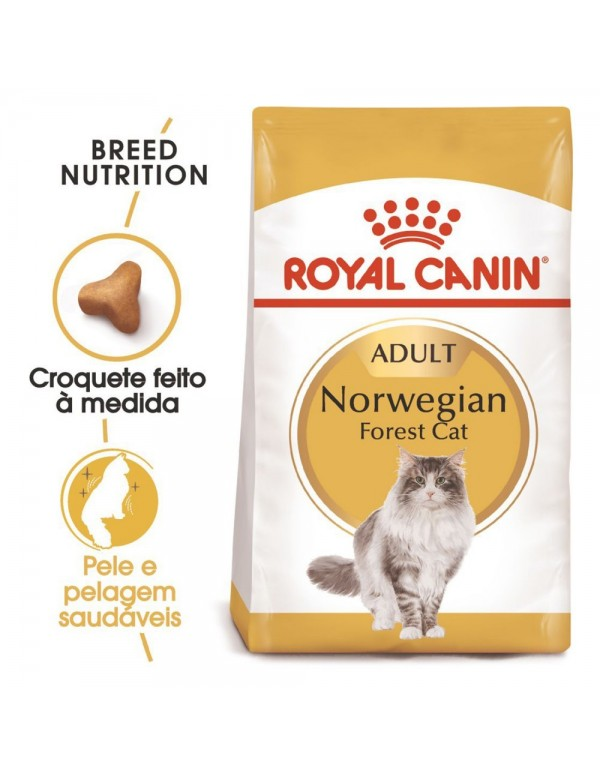 Royal Canin FBN Norwegian Forest Adult Alimento Seco Gato