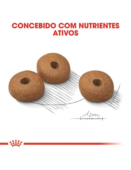Royal Canin SHN Médium Light Weight Care Alimento Seco Cão