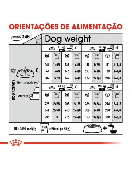 Royal Canin SHN Médium Digestive Care Alimento Seco Cão