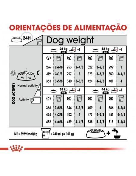 Royal Canin SHN Maxi Dermacomfort Alimento Seco Cão