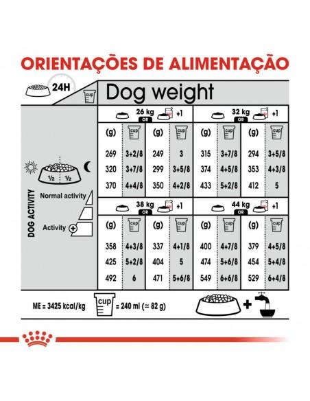 Royal Canin SHN Maxi Sterilised Alimento Seco Cão