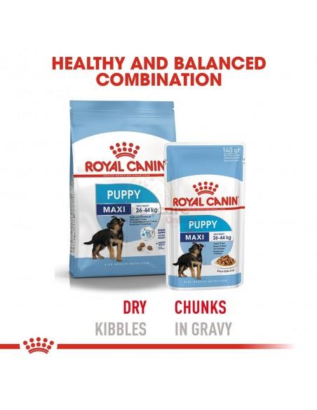 Royal Canin SHN Maxi Puppy Alimento Húmido Cão