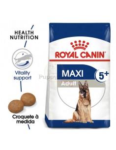 Royal Canin SHN Maxi Adult 5+ Alimento Seco Cão